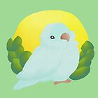 Morning Parrotlet by parrotletOvO