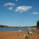 The Bottom of Falls Lake by Jay White