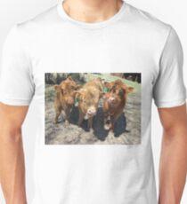 Iris, Roscoe, and Hugo  21 May 2015 Unisex T-Shirt