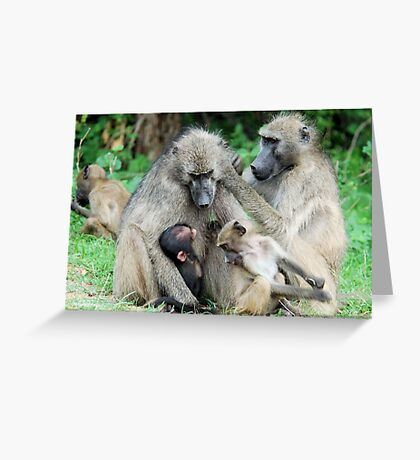 FAMILY TIME - THE CHACHMA BABOON - Papio ursinus Greeting Card