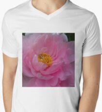 Heart of Spring Mens V-Neck T-Shirt