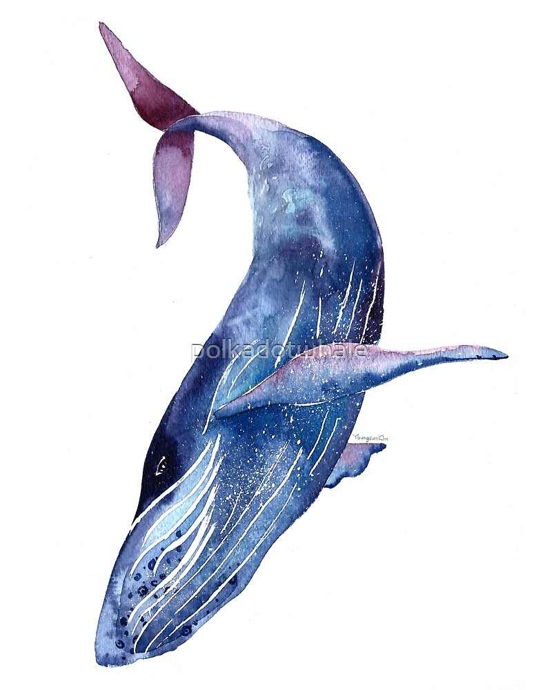 Uncategorized Blue Whale Pictures To Print whale art watercolor blue purple by polkadotwhale