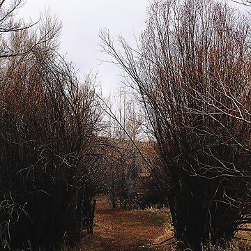 Bannack Overgrowth by Falln