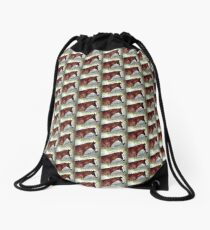 Elegant Transportation Drawstring Bag