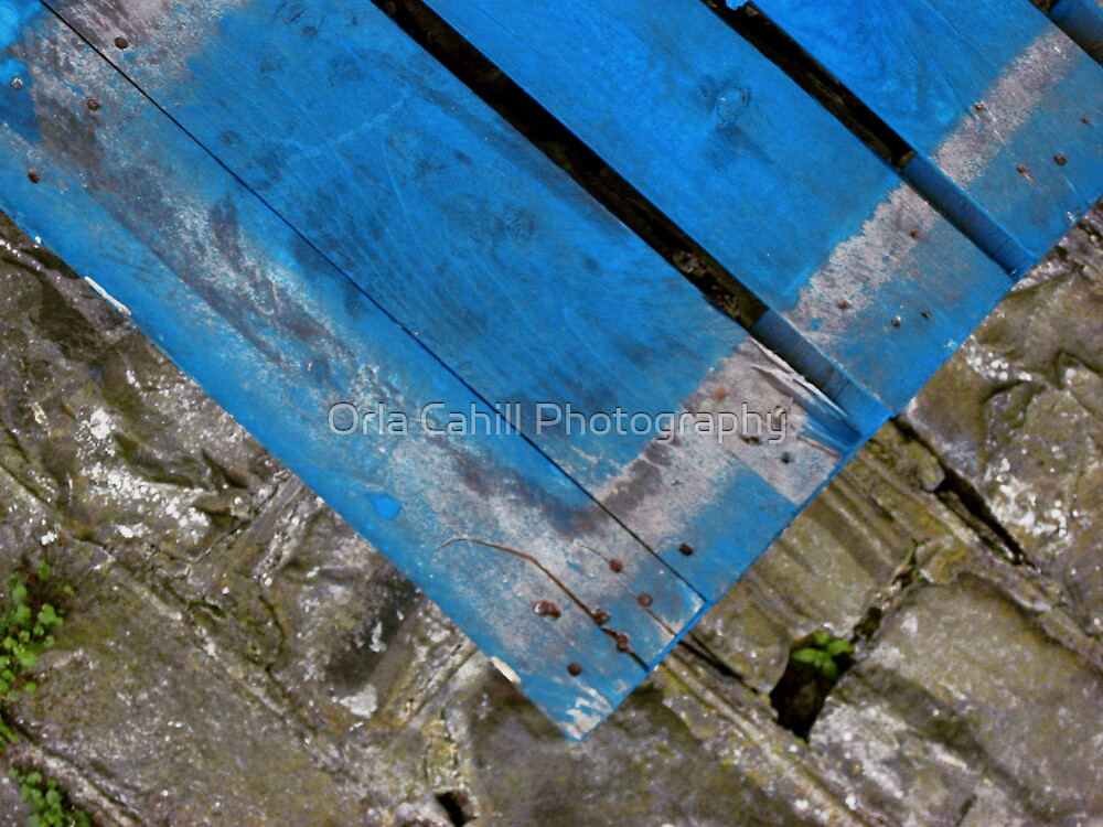 A Big Blue - V by Orla Cahill Photography