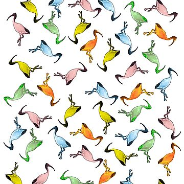 THE BIN CHICKEN COLONY CLEAR BACKGROUND RAINBOW BIN CHICKENS  by Iskybibblle