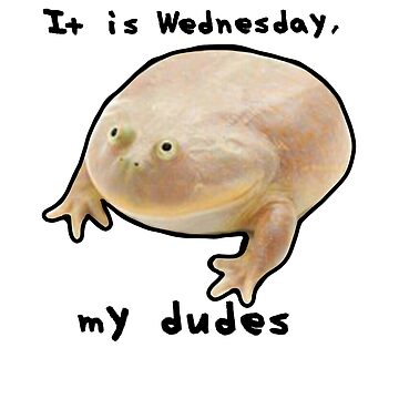 It is wednesday, my dudes by nicemusicdude
