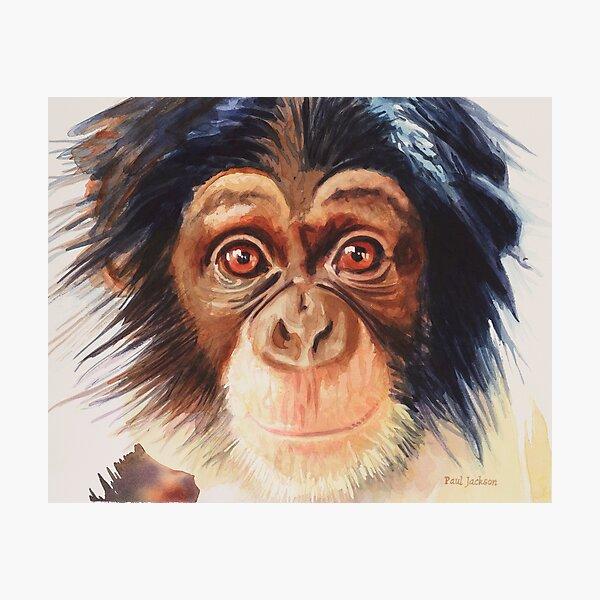 """Chimpanzee"" Watercolor Photographic Print"