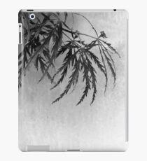 Acer iPad Case/Skin