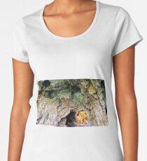 Rock formations Women's Premium T-Shirt