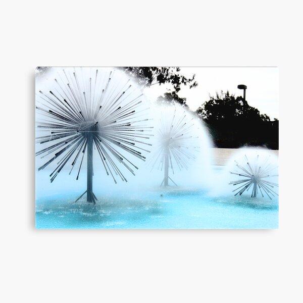 Dandylion Fountains Canvas Print