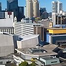 Auckland, Photograph by Vic Potter by Vic Potter