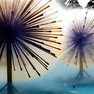Dandylion Fountains by Clayton Bruster