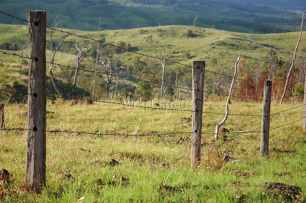 Warwick Fence Line © by Vicki Ferrari