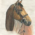 Horse Portrait by Marcella Chapman