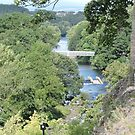 River View From Barnard Castle  by CreativeEm