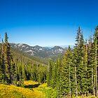 USA. Colorado. Rocky Mountains National Park. Scenery. by vadim19