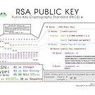 Public RSA Key by Carl Mehner
