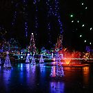 frozen pond lights by Perggals© - Stacey Turner
