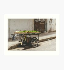 Limes on the Street, Cartagena, Colombia Art Print