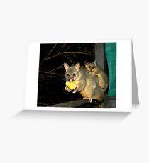 Brushtail Possum and Baby Greeting Card