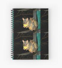 Brushtail Possum and Baby Spiral Notebook
