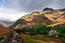 The Langdale Pikes by David Lewins