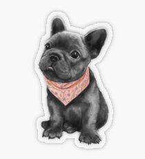Parlez-vous frenchie Transparent Sticker