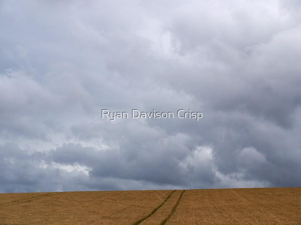 Tweed Field by Ryan Davison Crisp