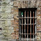 Caged  by Orla Cahill Photography