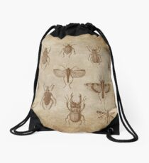 Collection of Insects - vintage Expedition Drawstring Bag
