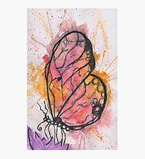 Colourful butterfly Photographic Print