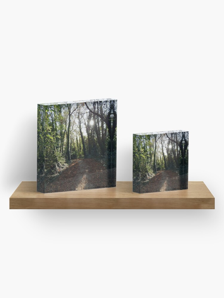 Alternate view of A Light in the Forest Acrylic Block