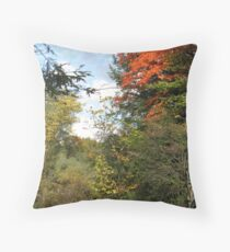 Walks and stops Throw Pillow