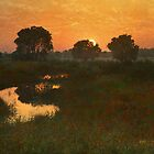marsh in south central kansas  by R Christopher  Vest