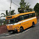 Horarios do Funchal bus 103 by motorista