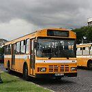 Horarios do Funchal bus 504 by motorista