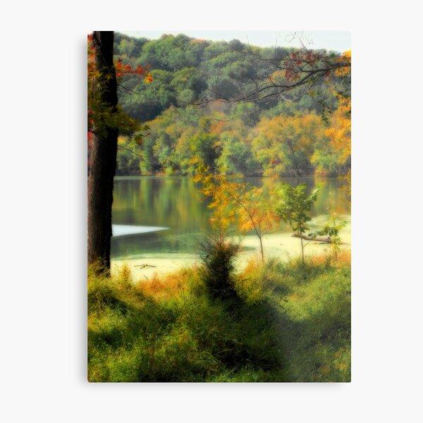 Radnor Lake Metal Print