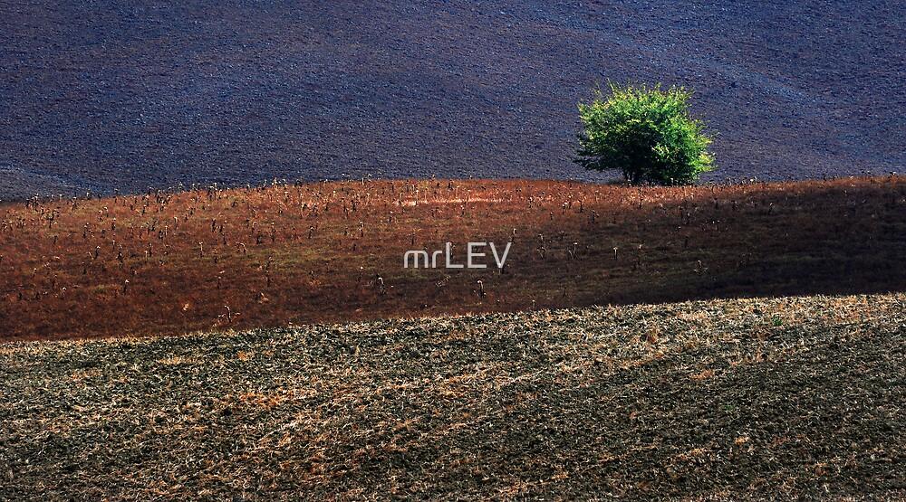 Flag of Tuscany by mrLEV