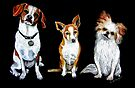 Dogs - Man's Best Friends by Linda Callaghan