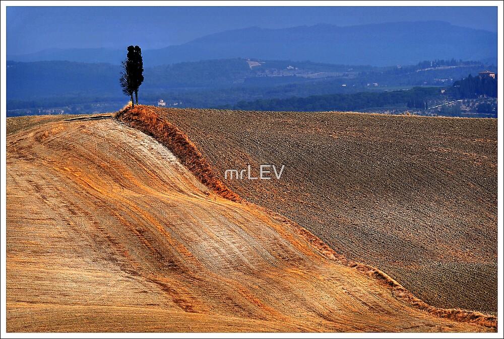 Golden border by mrLEV