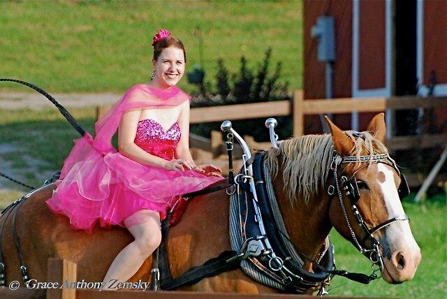 Wedding Rider by Grace Anthony Zemsky