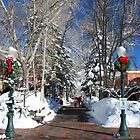 Aspen Xmas Ribbons by Michael Dietrich
