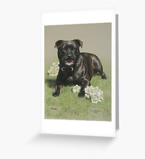 Asha Greeting Card