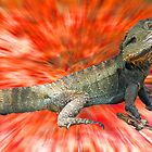 Male Eastern Water Dragon by indiafrank