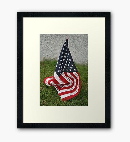 Stars and stripes Framed Print