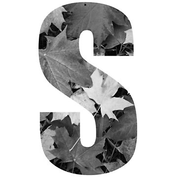 Autumn Leaves Letter S by PCollection
