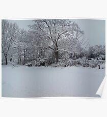 Snowy Scene Poster
