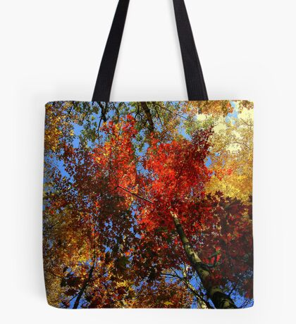 The View Above 2 Tote Bag