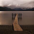 Lake Te Anau ... New Zealand by Angelika  Vogel